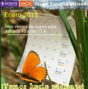 Comienza trimestre scouts