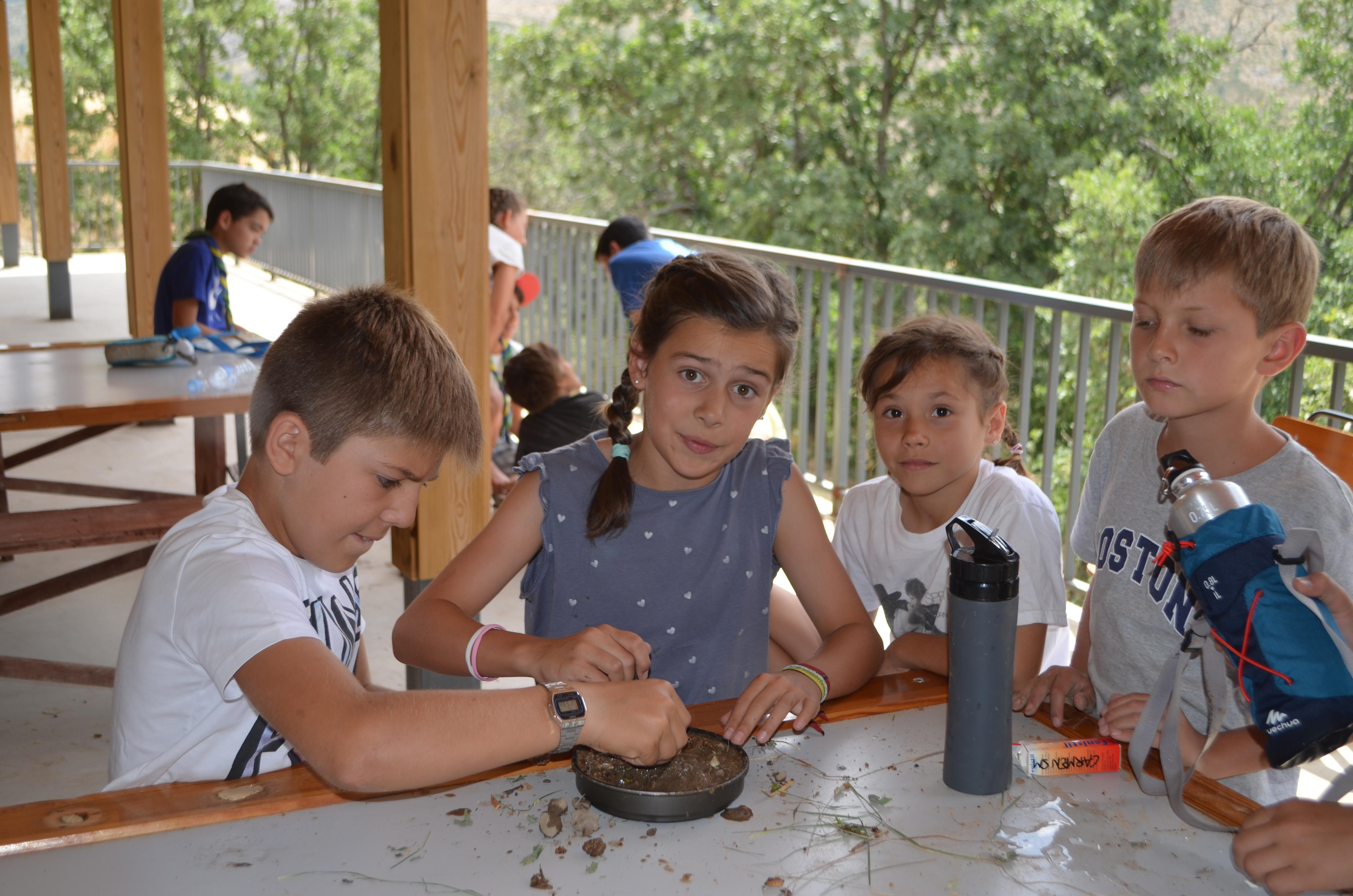 Campamento 2016 (171)
