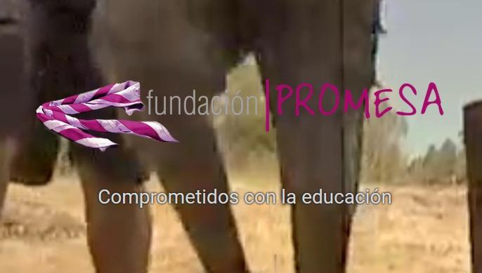 Fundación Promesa_Proyecto